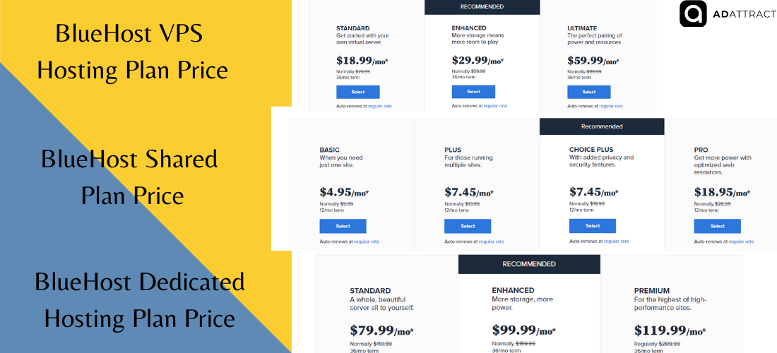 BlueHost Pricing